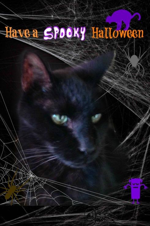 spooky halloween card 1